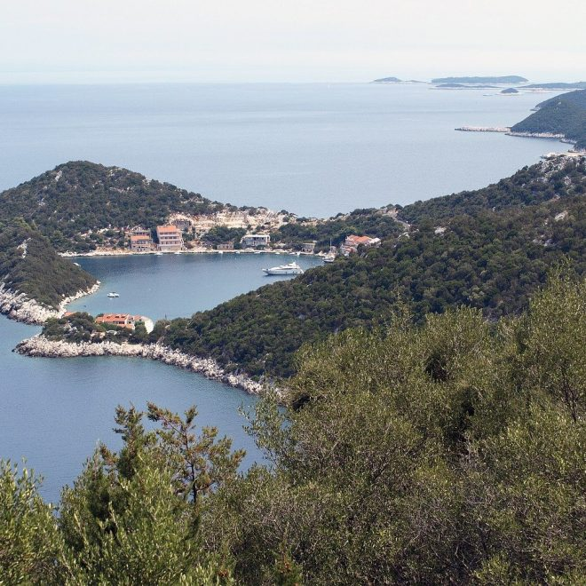 LASTOVO – Hook and Cook